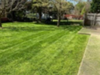 Order Lawn Care in Charlotte, NC, 28210