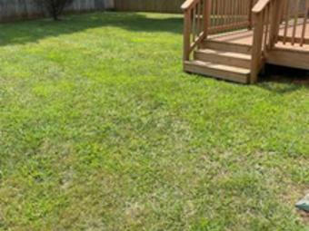 Order Lawn Care in Clarksville, TN, 37042