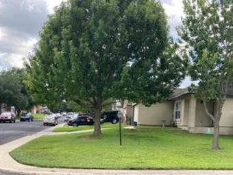 Order Lawn Care in San Antonio, TX, 78239