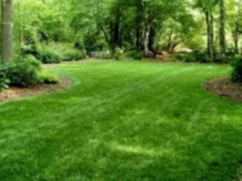 Order Lawn Care in Lebanon, OH, 45036