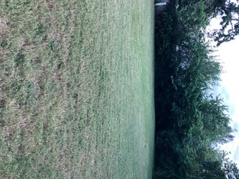 Order Lawn Care in Midwest City, OK, 73110