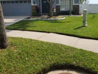 Order Lawn Care in Lithia, FL, 33547