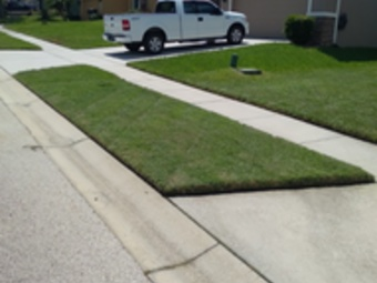 Order Lawn Care in Ocoee, FL,