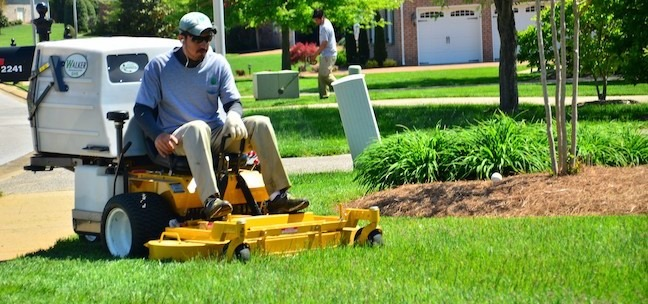 Get Affordable Lawn Care by GreenPal 1