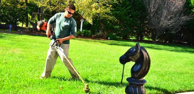Lawn Mowing Tips 6
