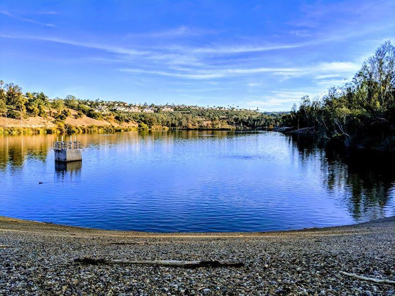 local-lawn-and-landscape-maintenance-services-near-me-in-Aliso Viejo-CA