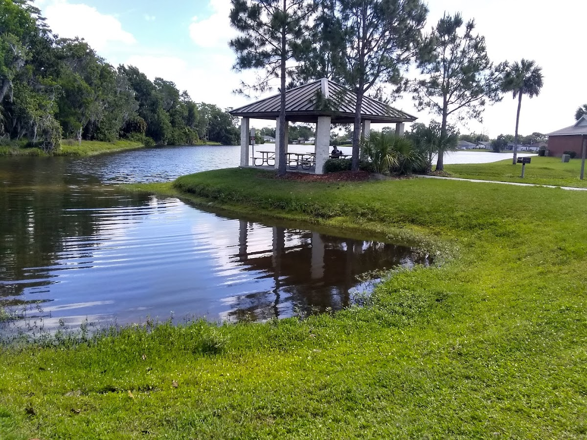 the-yard-cutting-businesses-in-Buena Ventura Lakes-FL
