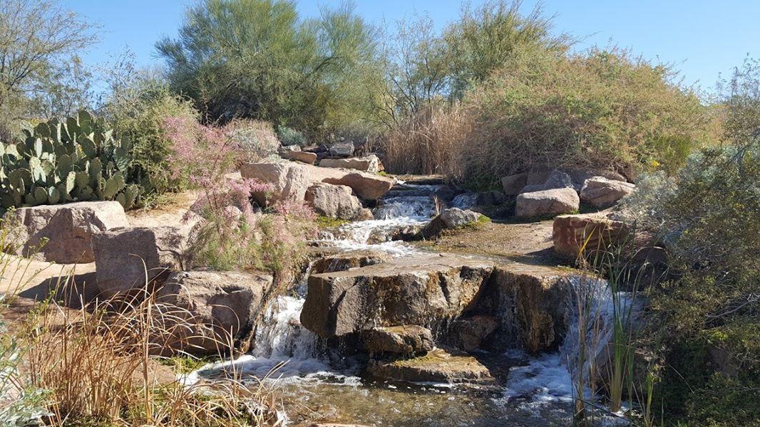 affordable-landscaping-maintenance-services-in-Chandler-AZ