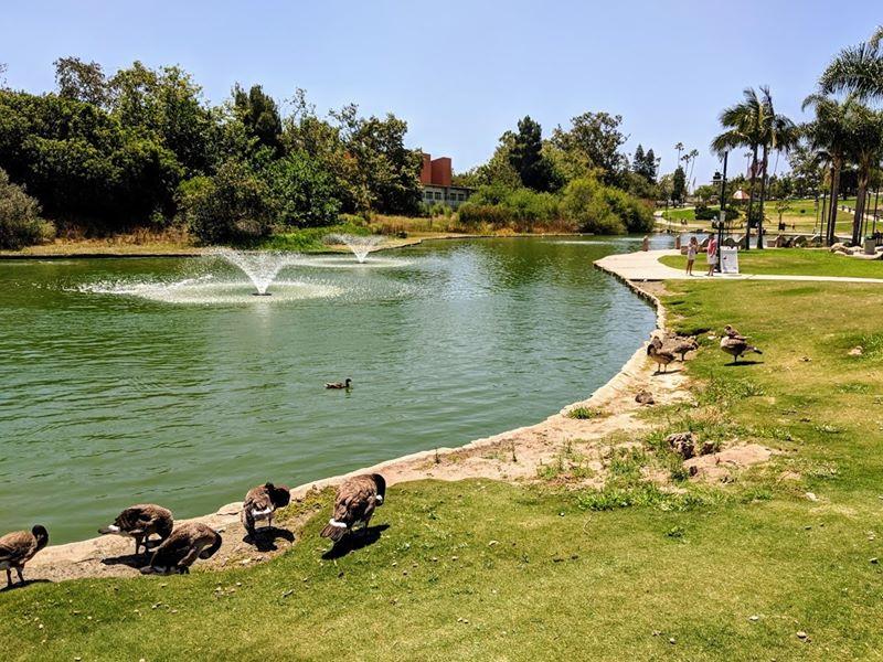 grass-cutting-businesses-in-Hawthorne-CA