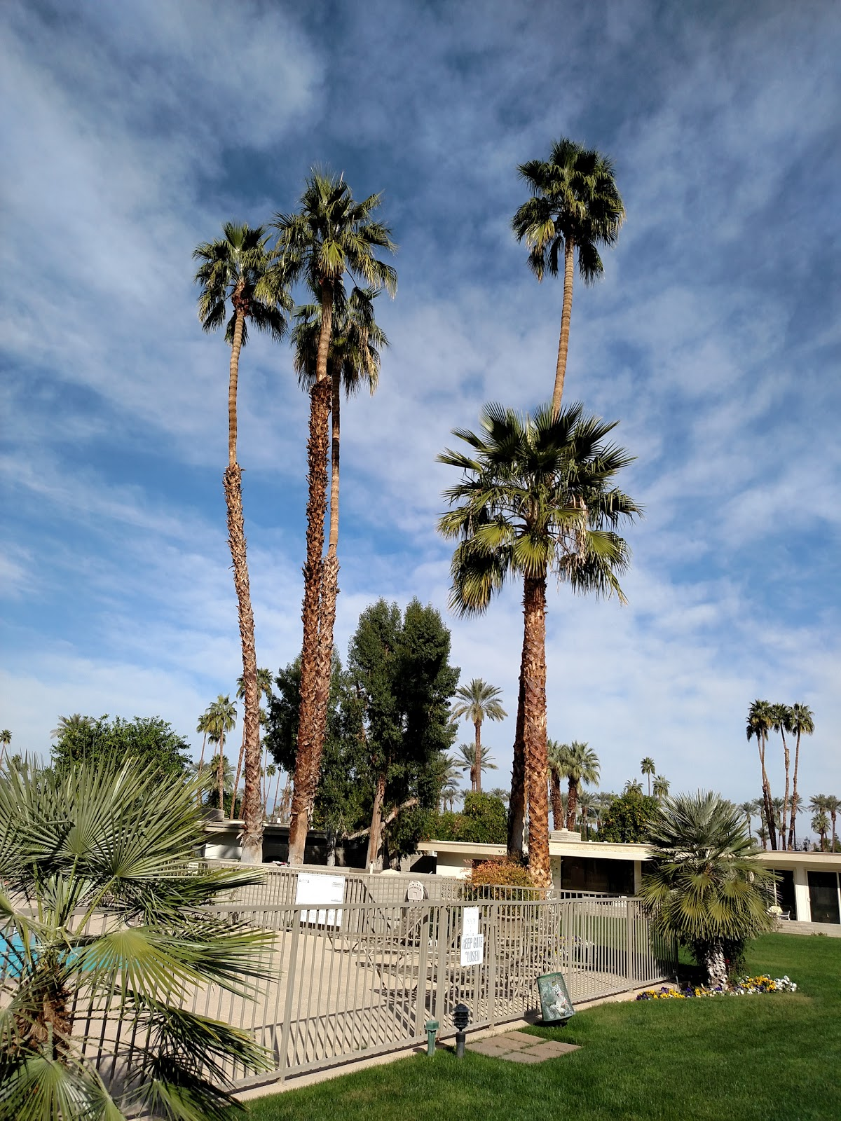 lawn-care-services-in-Palm Springs-CA