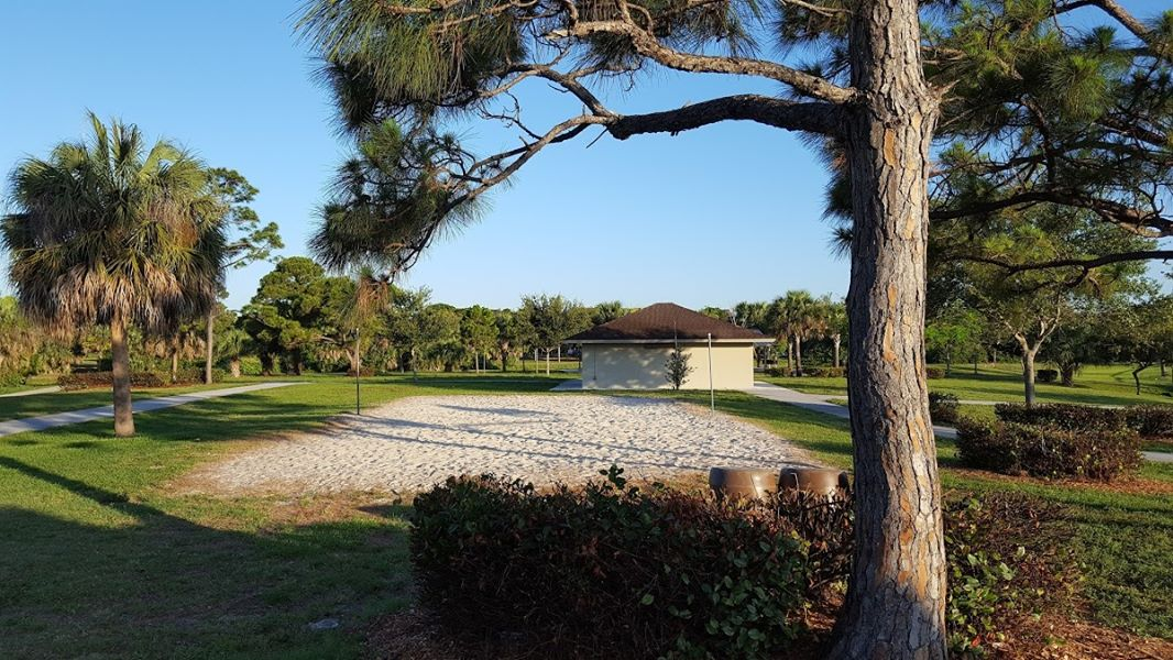 the-yard-cutting-businesses-in-Palm Springs-FL
