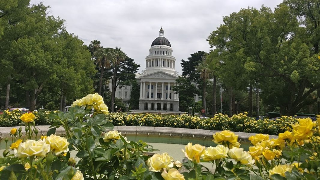 local-lawn-maintenance-contractors-in-Sacramento-CA