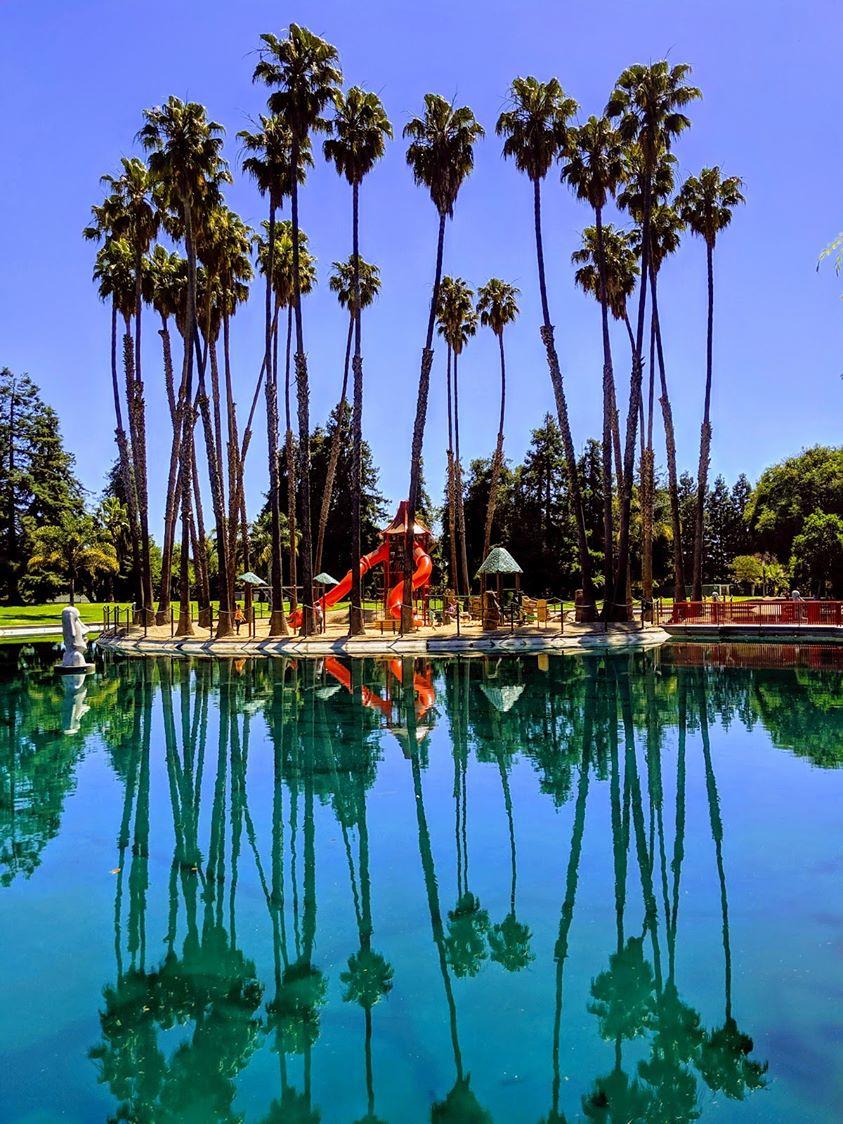 lawn-care-services-in-Sunnyvale-CA