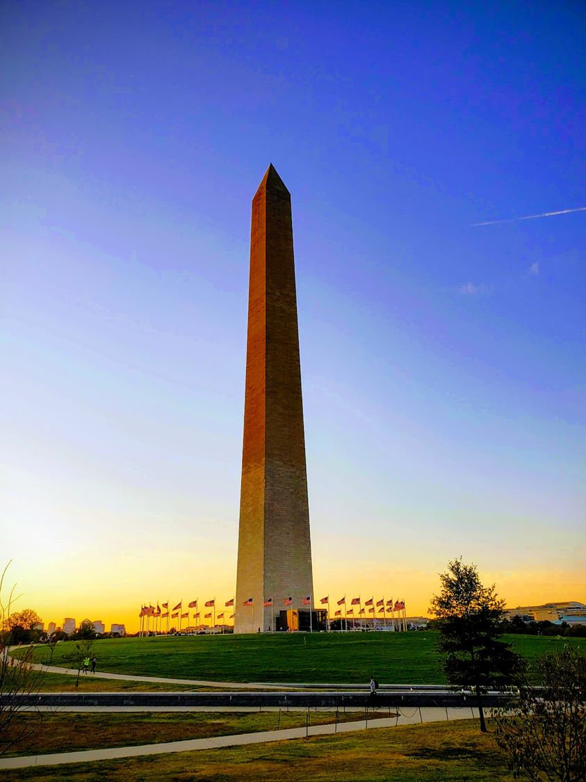 lawn-maintenance-in-Washington-DC