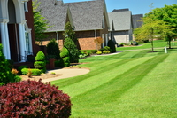 residential-lawn-cutting-businesses-in-Santa Ana-CA