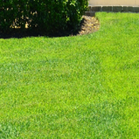 lawn-care-services-in-Monterey Park-CA