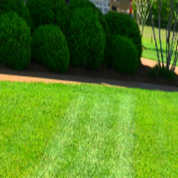 local-lawn-and-landscape-maintenance-services-near-me-in-Lancaster-California