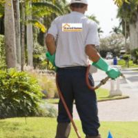 cheap-lawn-cutting-businesses-in-Hollywood-CA
