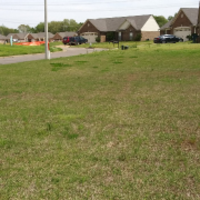 grass-cutting-businesses-in-Germantown-TN