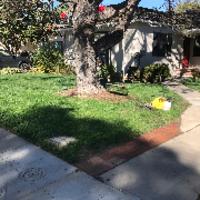lawn-care-services-in-Mission Beach-CA