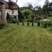 local-lawn-care-services-in-Springfield-PA