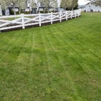 grass-cutting-businesses-in-Edmonds-WA