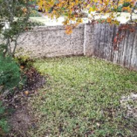 lawn-care-services-in-Windemere-TX