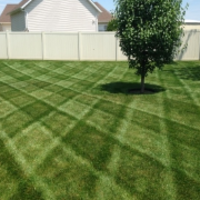 cheap-lawn-cutting-businesses-in-Omaha-NE
