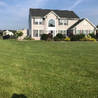 local-lawn-cutting-services-in-Buffalo-NY
