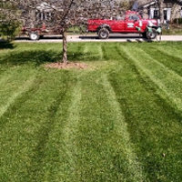 cheap-lawn-cutting-businesses-in-McMinnville-OR