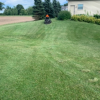 cheap-lawn-cutting-businesses-in-Franklin-WI
