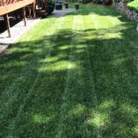 cheap-lawn-cutting-businesses-in-Pawtucket-RI