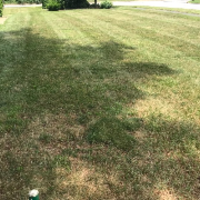 affordable-lawn-services-in-Warwick-RI