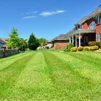 residential-lawn-cutting-businesses-in-Bridgeport-CT