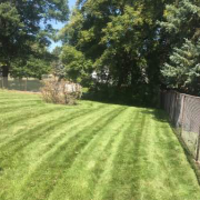 cheap-lawn-cutting-businesses-in-Plymouth-MN