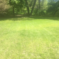 local-lawn-cutting-services-in-Bloomington-MN