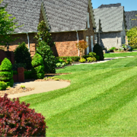affordable-lawn-services-in-Twin Cities-MN