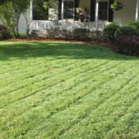 local-lawn-maintenance-contractors-in-St. Louis Park-MN