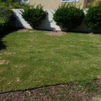 grass-cutting-businesses-in-Del Mar-CA