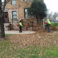 affordable-lawn-services-in-Berwyn-IL