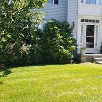 local-lawn-care-services-in-Trenton-NJ