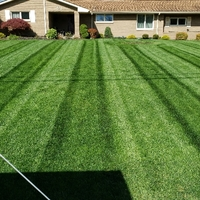 residential-lawn-cutting-businesses-in-Lynwood-CA