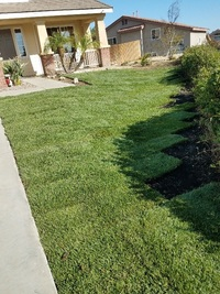 affordable-lawn-services-in-Corona-CA
