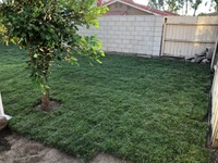 local-lawn-and-landscape-maintenance-services-near-me-in-Trabuco Canyon-California