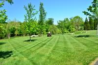 local-lawn-cutting-services-in-La Habra-CA