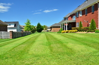 affordable-lawn-services-in-Westminster-CA
