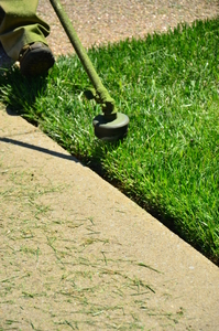 affordable-lawn-services-in-Torrance-CA