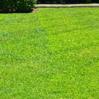 local-lawn-and-landscape-maintenance-services-near-me-in-El Monte-California
