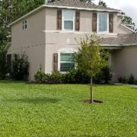 cheap-lawn-cutting-businesses-in-Palm Coast-FL