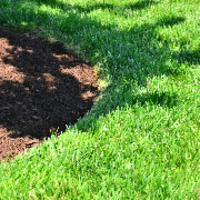 affordable-lawn-services-in-Albuquerque-NM